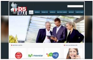 www.dsmax.com.co